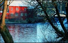 Through the trees (Lida Rose) Tags: bridge winter mill topf25 water dam waterfalls lewiscounty waterpower interestingness3 lewiscountyny lidarose croghanny croghanislandmill abigfave impressedbeauty explore14jan07