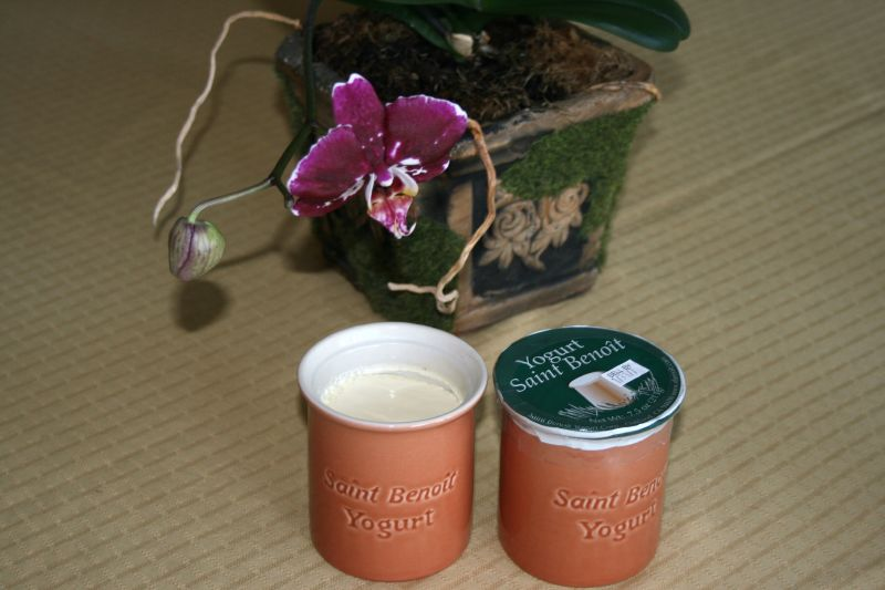 St. Benoit Yogurt