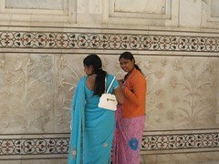 Taj Mahal - sarees