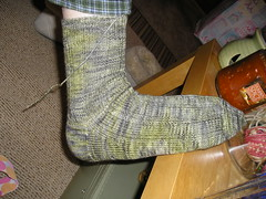 The Boy_koigu socks