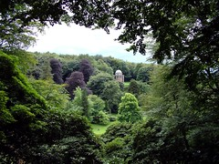 landscape in Wiltshire (Andrew Kettell) Tags: trees leaves landscape wiltshire fujis7000