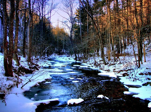 Wintry Creek