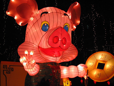 Enlightened Pink Pig