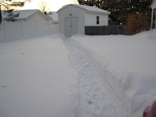 snow path to shed