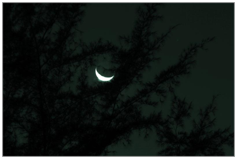 ஜென்னல்  நில Window Moon
