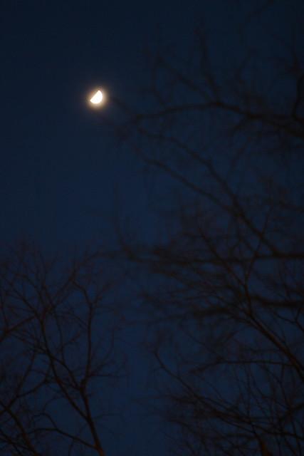 夕闇の半月
