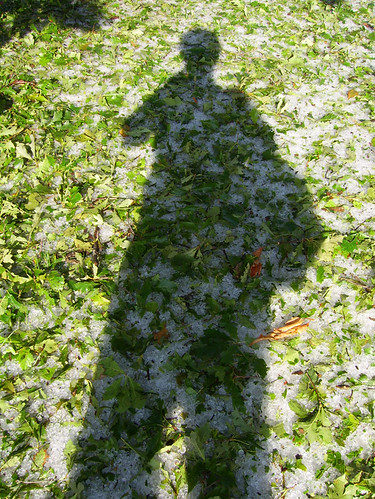 self portrait with hail