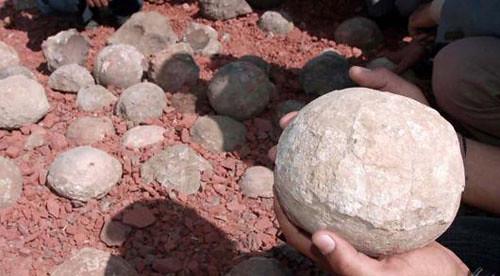 huevos de dinosaurio fosilizados
