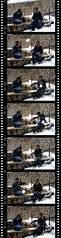 Film Strip - by Hamed Saber
