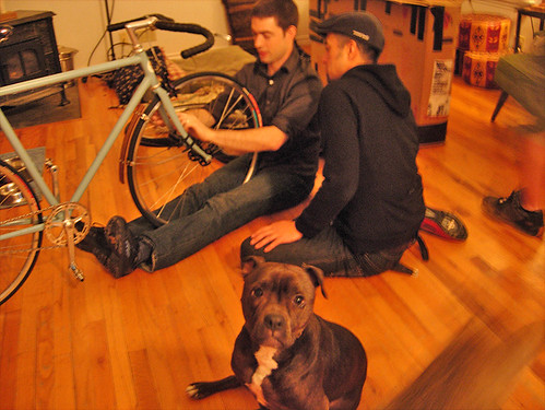 pie, the bike guard dog