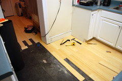 Bamboo Flooring Continued