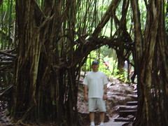 DSC00814 (jeremytheys) Tags: hawaii honeymoon waikikibeach honalulu