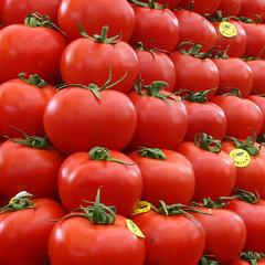 Tomatoes (svenwerk) Tags: red food verduras vegetables turkey market istanbul mercado trkei markt tomate gemse kadky tometo shiningred