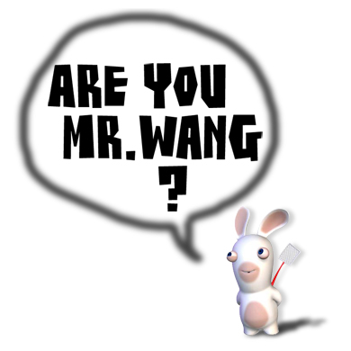 are you mr wang
