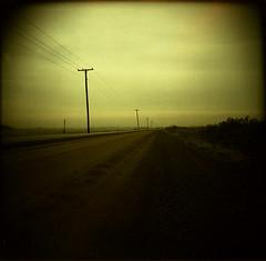Holga: The Road Ahead - by Matt Callow