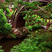 San Francisco - Golden Gate Park Japanese Tea Garden - Half Moon Bridge