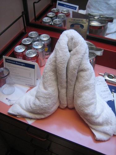 vagina towel