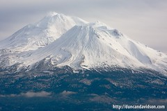 Windblown Mt. Shasta