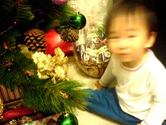 Kid at Christmas Tree