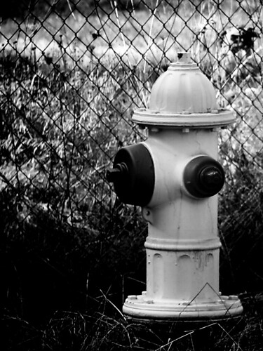 Fire Hydrant in Stayton Oregon