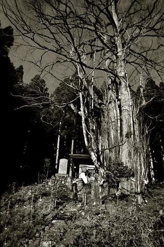 Shotou Yama, Guntouri Shrine Oku-no-in