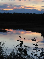 Reflection - Talkeetna Alaska (pomegranatecreations) Tags: bestnaturetnc06