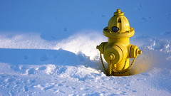 Hydrant (Mr Geoff) Tags: winter snow yellow hydrant fire bravo colorado interestingness1 denver explore frontpage i500 outstandingshots aplusphoto flickrplatinum potwkkc19