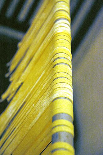 pasta-at-steves