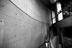 Collezione - Tadao Ando - Tokyo-10