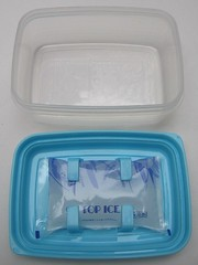 Chilled bento box with built-in gel pack