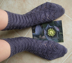 Petals Collection: Lenten Rose - Monkey Socks