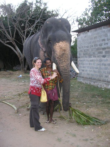 Cochin aunty
