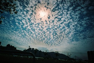 Natura - The strange sky [explore #368, 2007 02 02]