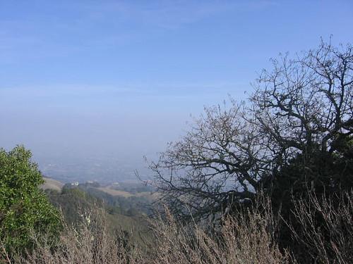 Trees, hills, sky.