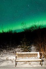 The sky over me (Matti .) Tags: longexposure trees winter snow bench iceland andromeda astrophotography m33 aurora nightsky d200 northernlights auroraborealis sigma30mmf14 norurljs scoreme44 judgmentday54 nikonstunninggallery
