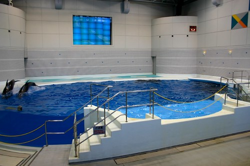 The Kagoshima aquarium
