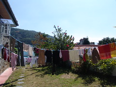 Laundry Morning in the Front Yard