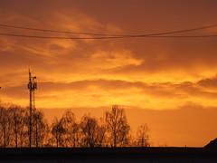 Golden Sky over Kamieńskiego street , Wrocław (szogun000) Tags: wrocław poland polska cityscape tree sunrise sunset sunshine dawn dusk sky clouds colors picturesque dolnośląskie dolnyśląsk lowersilesia fujifilm finepix s3500