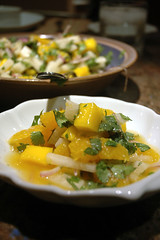 Orange Mango Jicama Salad