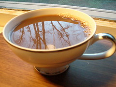Late afternoon reflections (stupid clever) Tags: china trees coffee reflections coffeecup mikasa mikasachinacup
