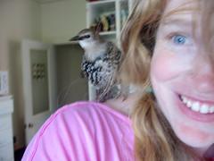 lookit my new birdie friend
