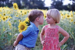 PE-044-0235 (Jenny279) Tags: flowers girls friends boy 2 summer two people cute boys grass childhood kids youth children outside outdoors photography kid day child seasons friendship blossom pair innocent colorphotography young couples trouble blond sunflowers blonde innocence nervous males daytime whites youthful females cuteness pal distress distrust companion twopeople anxiety anxious nervousness wary grassy troubled caucasian puppylove helianthus companionship ruralscenes mistrustful anxieties mistrust camaraderie youthfulness distrustful anxiousness