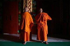 Monks at Wat Manorom, Louang Prabang