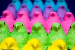 An Army of Peeps