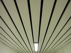(Desideria) Tags: light bw white abstract rayas blanco luz licht stripes corridor wei pasillo flur streifen photooftheday bwpics 08mar2007