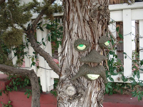 tree man pictures. tree man