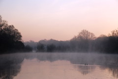Early morning fog (chrish_ffm) Tags: sunrise duck frankfurt main ente morgen raureif frhnebel enkheimerried