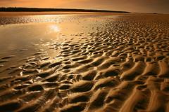Ripples - Holkham, Norfolk (RoryO'Bryen) Tags: light sea beach canon sand mud norfolk playa rory stunning ripples holkham eos5d outstandingshots obryen a1f1 roryobryen flickrdiamond roarsthelion copyrightroryobryen