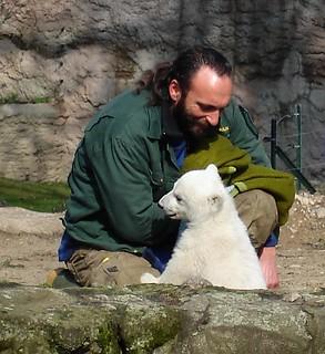 Gestatten, Knut!