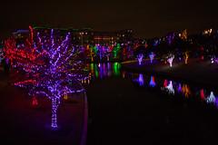 121016-23 (kara_muse) Tags: christmaslights vitruvianpark